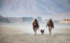 New Law Ensures No Military Working Dog Will Be Left Behind. Ever.