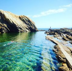 Do a spot of snorkelling in a natural rock pool. | 23 Magical Things You Didn't Know You Could Do In NSW