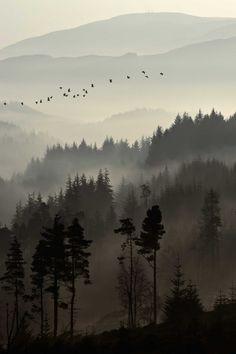 Beautiful misty morning. [Dukes Pass, Trossachs {Scotland} by David Mould, via 500px]