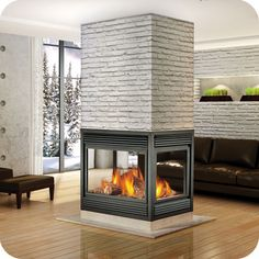 Google Image Result for http://www.continentalfireplaces.com/images_fireplace_stove_insert/gas_fireplace_images/BCNV40_gas_fireplace.jpg