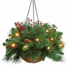 Here are some of the best Christmas hanging baskets with lights that can be hung in either an outdoor or indoor location. These lighted hanging baskets are battery operated and do not require an electrical outlet or extension cord. Christmas Hanging Baskets, Pine Cone Christmas Decorations, Christmas Tree Branches, Christmas Planters, Christmas Porch, Christmas Holidays, Christmas Wreaths, Christmas Crafts, Outdoor Decorations