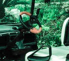 https://flic.kr/s/aHskAkcGtg   קלאב קאר - מותג איכותי ברשת המובילה בארץ - גרין אקסטרים   קלאב קאר איכותי ברשת המובילה בארץ לרכבים תפעוליים חשמליים - גרין אקסטרים Green Extreme