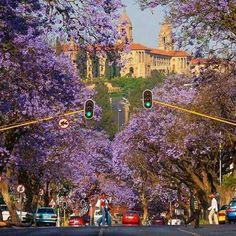 Highlights in and around Johannesburg and Pretoria, South Africa. Ask most travellers and they'll tell you that they'd rather avoid Johannesburg if at all. Pretoria, Johannesburg City, Historical Landmarks, Africa Travel, Cape Town, Ottawa, South Africa, Vancouver, Melbourne