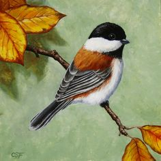 Bird Painting - Chickadee - Autumn Charm by Crista Forest