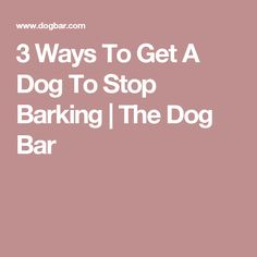 3 Ways To Get A Dog To Stop Barking | The Dog Bar