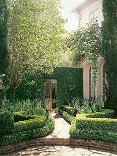 vine covered wall w/ antique door - entrance to garden