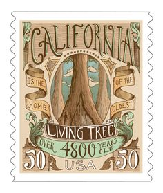 Biljana Kroll's Portfolio: Typography Postage Stamp Concept - California
