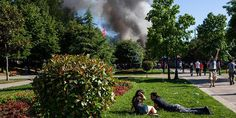 A selection of the best images from around the world Fotojournalismus, Cool Photos, Amazing Photos, Niagara Falls, Dolores Park, Relax, Around The Worlds, Istanbul Turkey, Artist