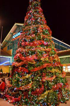 Christmas In The Smokies.73 Best Christmas In The Smokies Images In 2019 Great