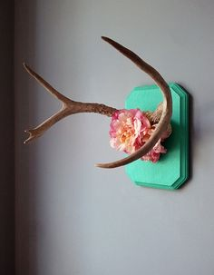 Deer antlers with flowers.