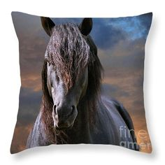 """Morgan Stallion in the Clouds Throw Pillow 14"""" x 14"""" by Sandra  Huston"""