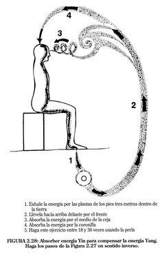 Esta unión se puede producir en diferentes lugares (en el ombligo, el corazón, en medio de la ceja) y en diferentes momentos según la calidad de energía que precise para una tarea
