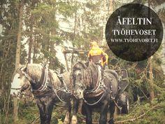 www.tyohevoset.fi