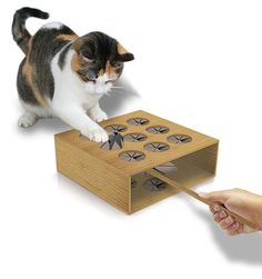 This awesome whack-a-mole game for your kitty cat.... and you! From an old box, create a WHACK A MOLE toy easy to make and use with a feather or other toy to exercise your cat and your own lungs as you laugh. #DianaDee - https://www.pinterest.com/DianaDeeOsborne/funky-mood-lifters/ - FUNKY MOOD LIFTERS. Photo source is part of marketing ads from the kitty litter maker Arm and Hammer, Adorable Ways to make your home Cat Friendly.