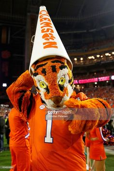 the-clemson-tigers-mascot-the-tiger-cheers-during-the-2016-college-picture-id504624802 683×1,024 pixels