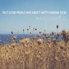 Tact is for people who aren't witty enough to be sarcastic. If Karen Walker Quotes Were Motivational Posters Great Quotes, Me Quotes, Funny Quotes, Inspirational Quotes, Karen Walker Quotes, Motivational Posters, How I Feel, Quotable Quotes, Monday Motivation