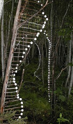 Land ART. How clever is this?!  I am going to do this along our long and woody drive way!