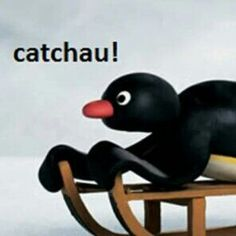 Funny Images, Funny Photos, Pingu Pingu, Pingu Memes, Haha, Cartoon Memes, Word Pictures, Reaction Pictures, Cringe