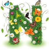alphabet letters : Beautiful spring letter N Stock Photo
