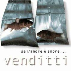 Antonello Venditti - Se l'amore è amore... (2000) Flac