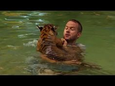 Tiger Cubs Swimming For The First Time - Tigers About The House - BBC - YouTube