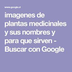 imagenes de plantas medicinales y sus nombres y para que sirven - Buscar con Google