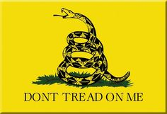x Dont Tread on Me Gadsden Bumper Stickers Decals Window Sticker Car Decal: x x Don't Tread on Me Gadsden Flag vinyl bumper sticker. Us History, American History, American Flag, American Pride, Gadsden Flag, Look Man, American Revolutionary War, Dont Tread On Me, Happy 4 Of July