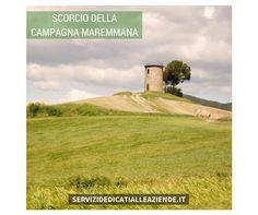 [MAREMMA] Terra ricca di fascino metà di molti turisti, sia italiani che stranieri, ricca di aree faunistiche.