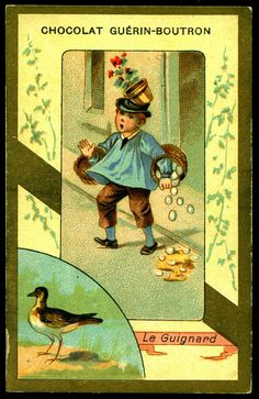 French Tradecard - The Dotterel