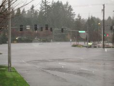 3 submerged cars at the intersection of Cooper Point Rd. and Black Lake Blvd., in Olympia, WA. I can see one car getting stuck, maybe two. But why did the third car enter the intersection?Edit: people have been asking me how I came to take this photo, and people in other states who have seen the flood coverage on the news have been asking how I fared with all of the flooding. Here's how my day was:I headed out at 8:30am to drop off my car for a five hour maintenance job at Honda on the…