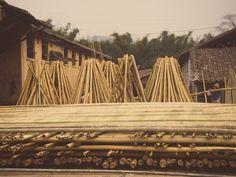 bambus  lagerplatz