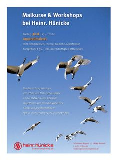 Hünicke Rostock èse 18 14
