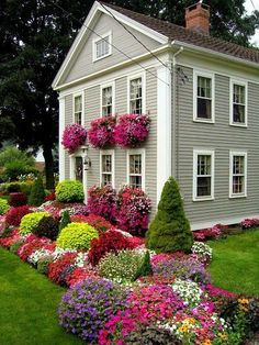 This is Chrissie D'Esopo's garden, courtesy the 'Connecticut Horticultural Society', photo by Steve Silk. She opened her home up for a garden tour for charity,