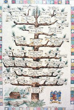 6 Generation Pedigree Chart - Family tree and inheritance - Familie Family Tree Quilt, Family Tree Art, Family Tree Designs, Family Tree Templates, Pedigree Chart, Etiquette Vintage, Genealogy Chart, Family History, Blender Tutorial