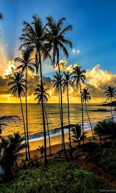 The most beautiful Island's in the world Hawaii - HHarris Most Beautiful Beaches, Beautiful Sunset, Beautiful World, Beautiful Places, Types Of Photography, Landscape Photography, Nature Photography, Beach Pictures, Nature Pictures