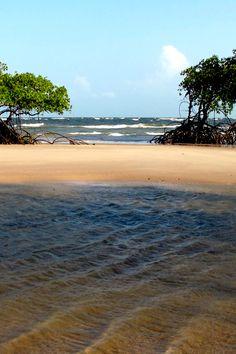 Ilha de Marajó, Brazil