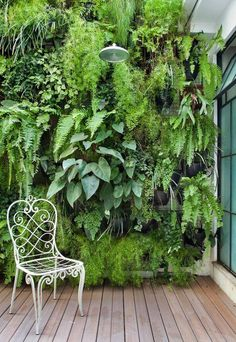 Trellis, hooks, hang baskets of greenery close together to form a wall of greens