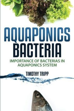 Aquaponics Bacteria: Importance of Bacterias in Aquaponics System... Unlike hydroponics and aquaculture, bacteria play a key role in the aquaponics systems. They are the link between fish and plants, and for the completion of food chain. ... #Aquaponics #Hydroponics