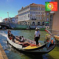 AMOTEPORTUGAL.PT  •Foto de:@amorimpet •Local:Aveiro, Portugal