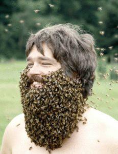 beekeeper with bee beard