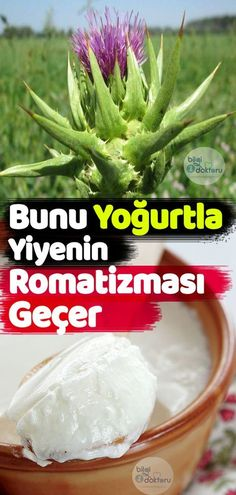 Famous Tutorial and Ideas Natural Treatments, Diet And Nutrition, Photography Tutorials, Cabbage, The Cure, Health Fitness, Herbs, Weight Loss, Skin Care