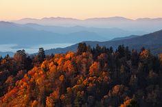 Tennessee- America's top Fall foliage, coast to coast. http://www.dreamplango.com/article/4345/coasttocoast-color-americas-10-fall-foliage-sites/6