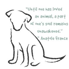 """Until one has loved an animal, a part of one's soul remains unawakened."""