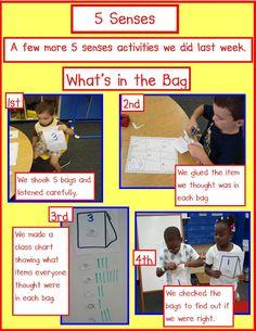 5 Senses- Freebies