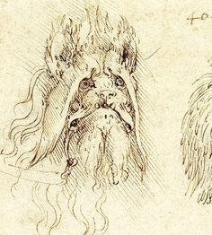 85. Two heads of grotesque animals, Undated, ink