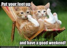Happy weekend everybody ,enjoy and relax. xxx