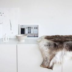 """Luxury Reindeer Large Hide Rugs Huge Choice 