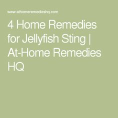 4 Home Remedies for Jellyfish Sting | At-Home Remedies HQ