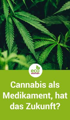 Die Liste der medizinischen Effekte von Cannabis ist lang. Bei Multipler Sklerose (MS) und Parkinson sind insbesondere die schmerzlindernden und entzündungshemmenden Eigenschaften interessant. Laut Studie berichten viele Patienten von einer Besserungen ihrer Erkrankung durch die Einnahme von Cannabis Medikamenten. Cannabis als Medikament, hat das Zukunft? Wir schauen uns die Studie genauer an. #cannabis #medikament #multiplersklerose  #parkinson #gesundheit