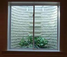 Lovely Basement Window Well Scenes